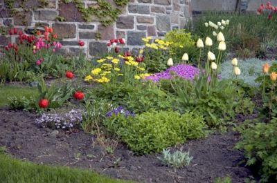 Spring Garden Mix