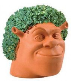 Chia Pets Review - Do these plants REALLY work?