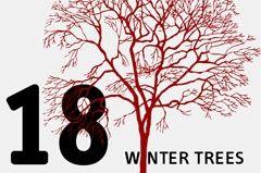 CSH winter trees by ~eiermann1952
