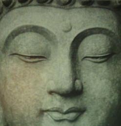My Buddha Collection