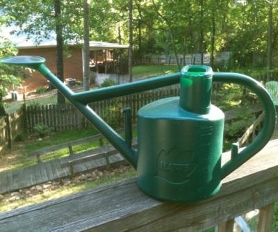 My favorite Gardening Tool: My Haws Watering Can