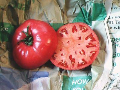 Newsworthy Tomato by Mickie_G