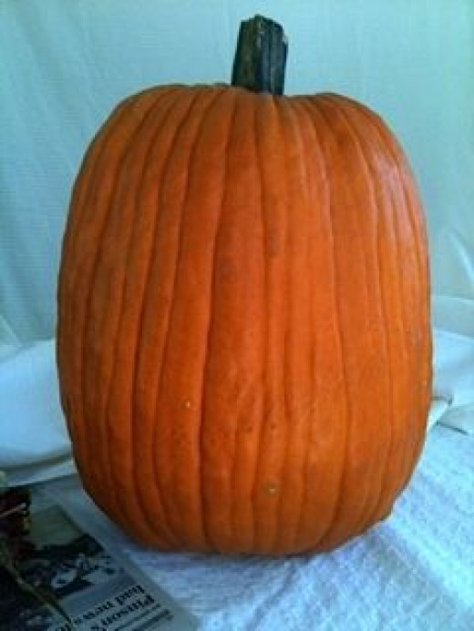 A blank faced pumpkin!