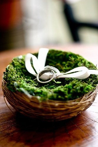 A ring-bearers' nest as shown by one Pinterest post